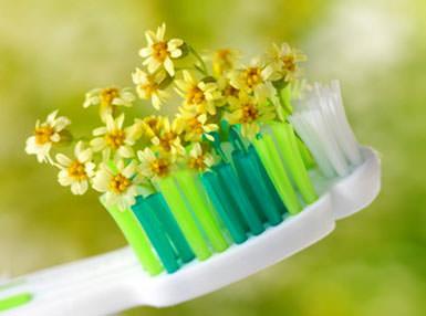 Как укрепить зубы и десны народными средствами, если они кровоточат: народные рецепты и шалфей